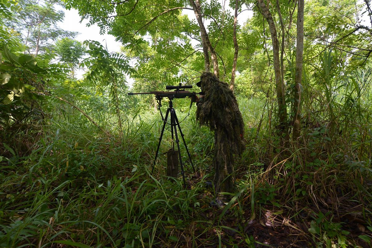 A sniper trainee sets up his rifle well behind a layer of vegetation. This ensures that when he fires a shot, the muzzle flash and escaping gases from the weapon will not disturb any leaves and give his position away.