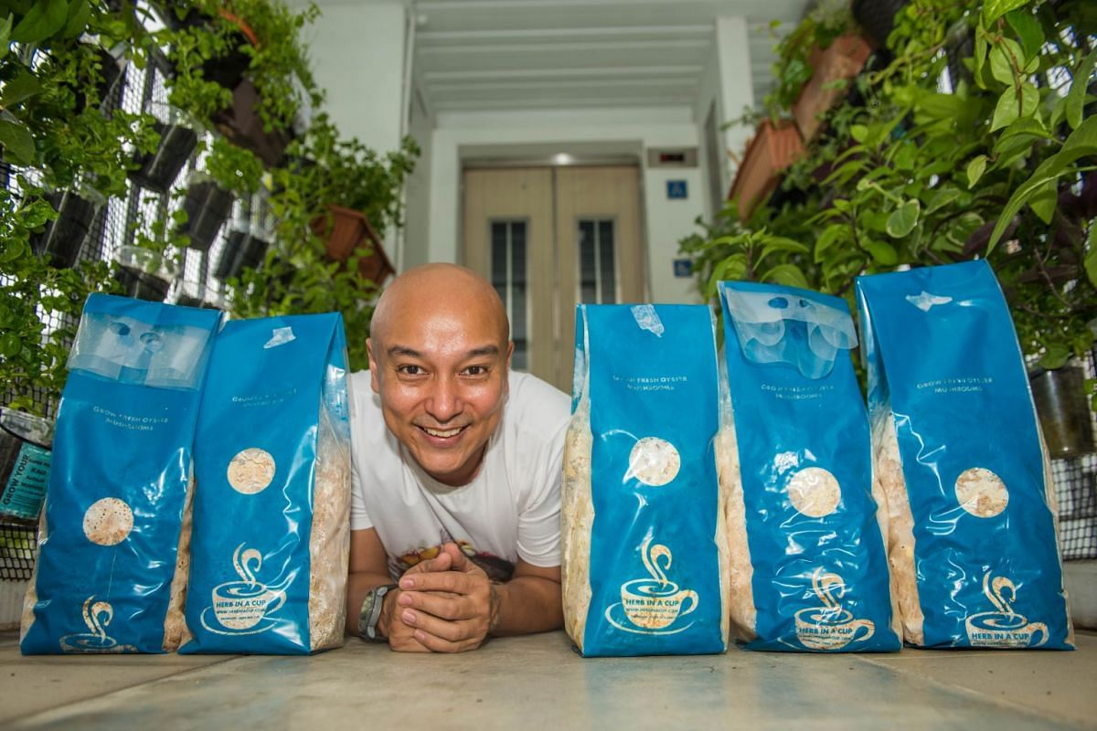 Mr Balan Gopal creates grow-it-yourself mushroom kits which he sells through his online business, Herb In A Cup.