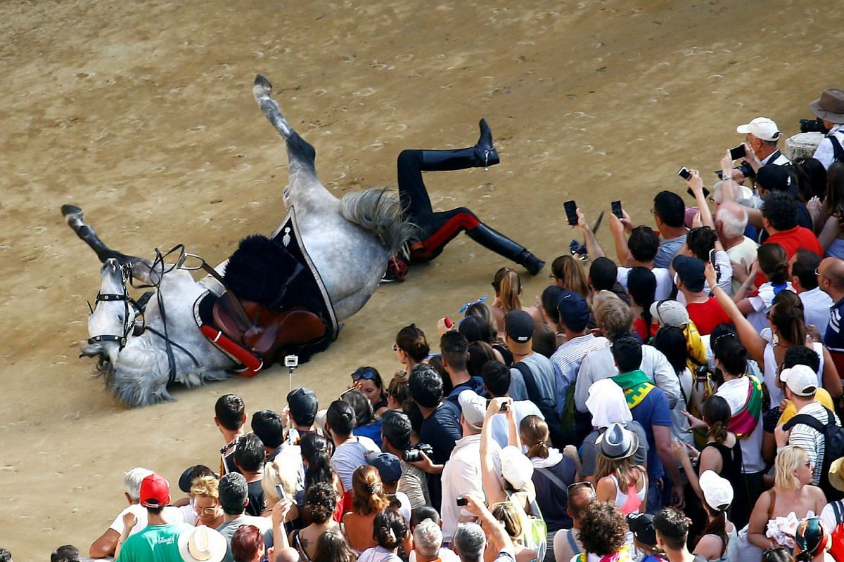 Italian Carabinieri police falls down from his horse during their parade prior the Palio of Siena horse race, Italy, July 2, 2018.