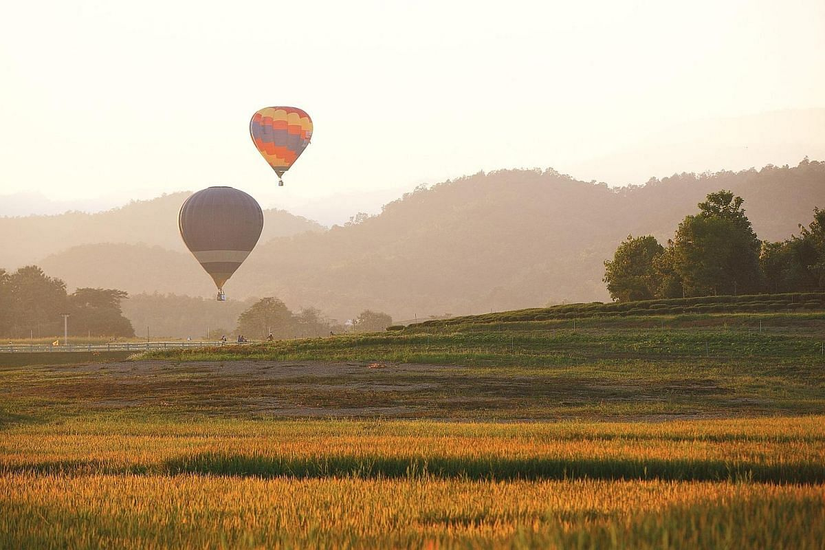 Delving into the caves of Soppong in Mae Hong Son province is an exhilarating experience. Sprawling amusement park Singha Park hosts an annual hot air balloon festival. Above: Visitors can tour tea plantations like Choke Chamroen, where they can get