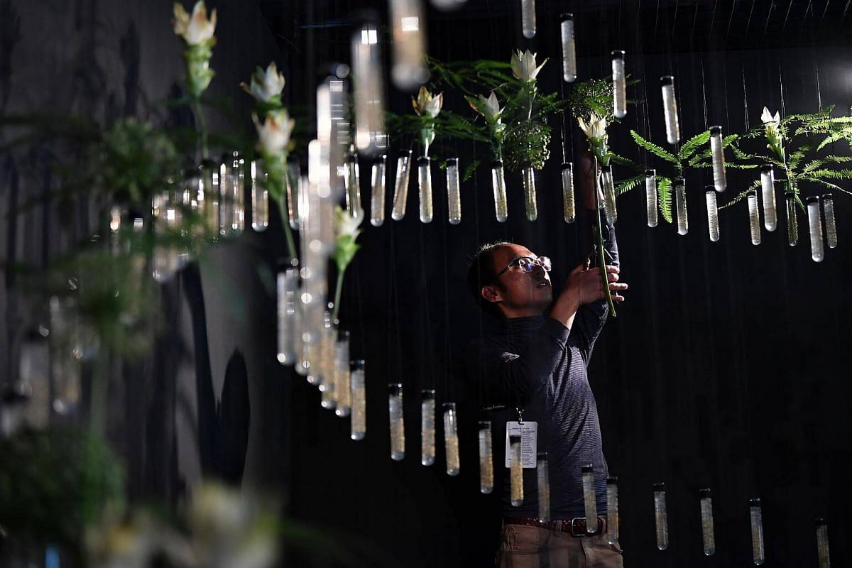Keith inserting an Allium sp. flower into a test tube on the last day of setup for the floral window display at Gardens by the Bay, on July 19, 2018.