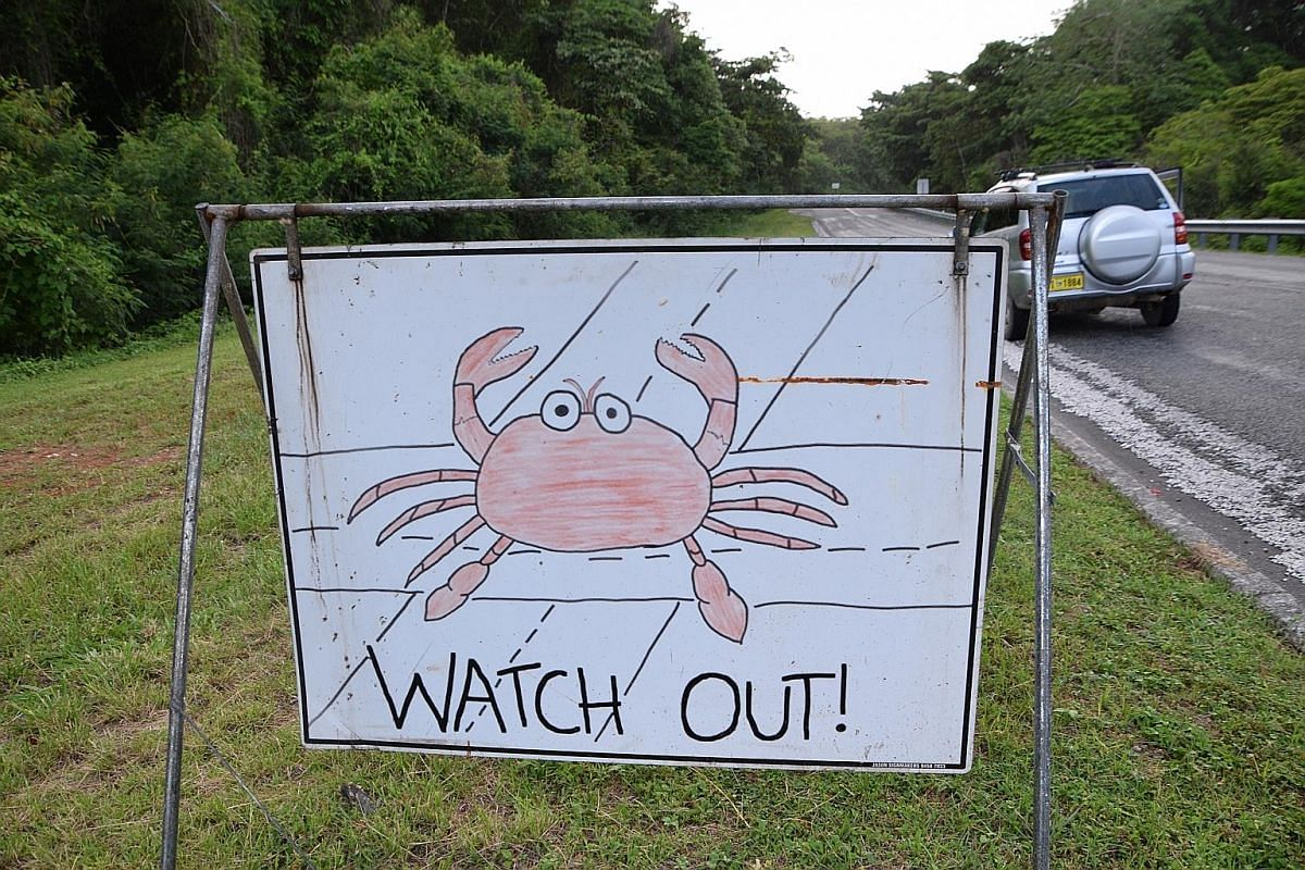 Blowholes along the southern coastline of jagged limestone cliffs. The Golden Bosun Tavern in Settlement, the go-to place for drinks while watching Christmas Island's fiery sunsets. A road sign warning motorists to steer clear of red crabs. Red crabs