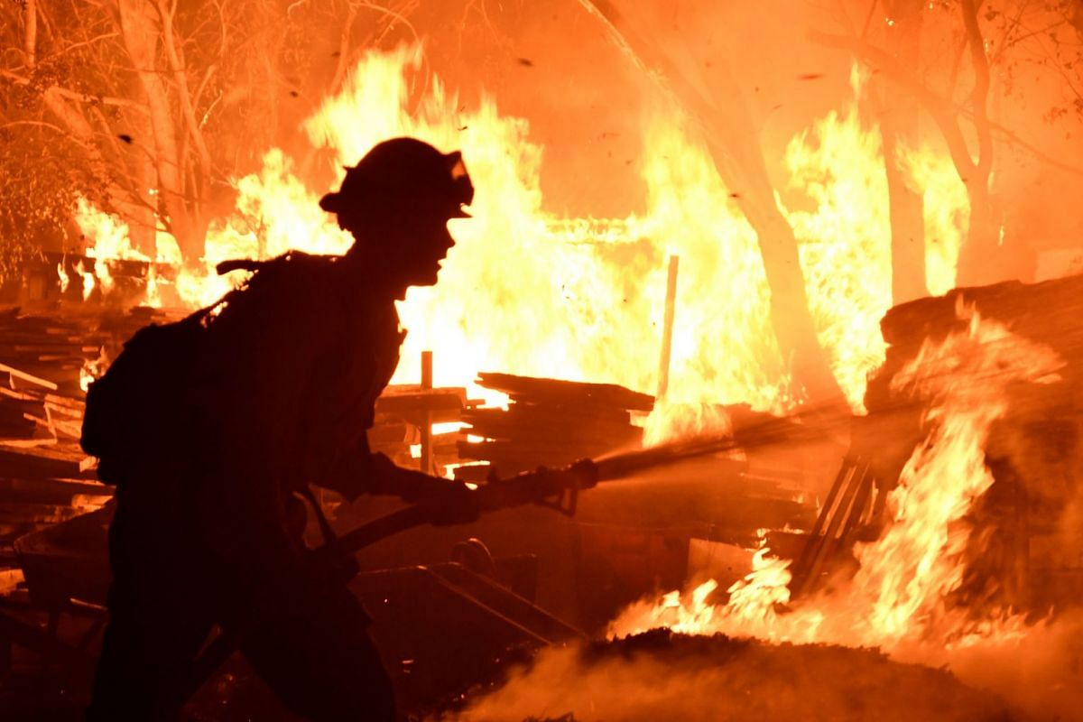 Firefighters battle the fast-moving wildfire in Goleta of California, US, on  July 7, 2018.