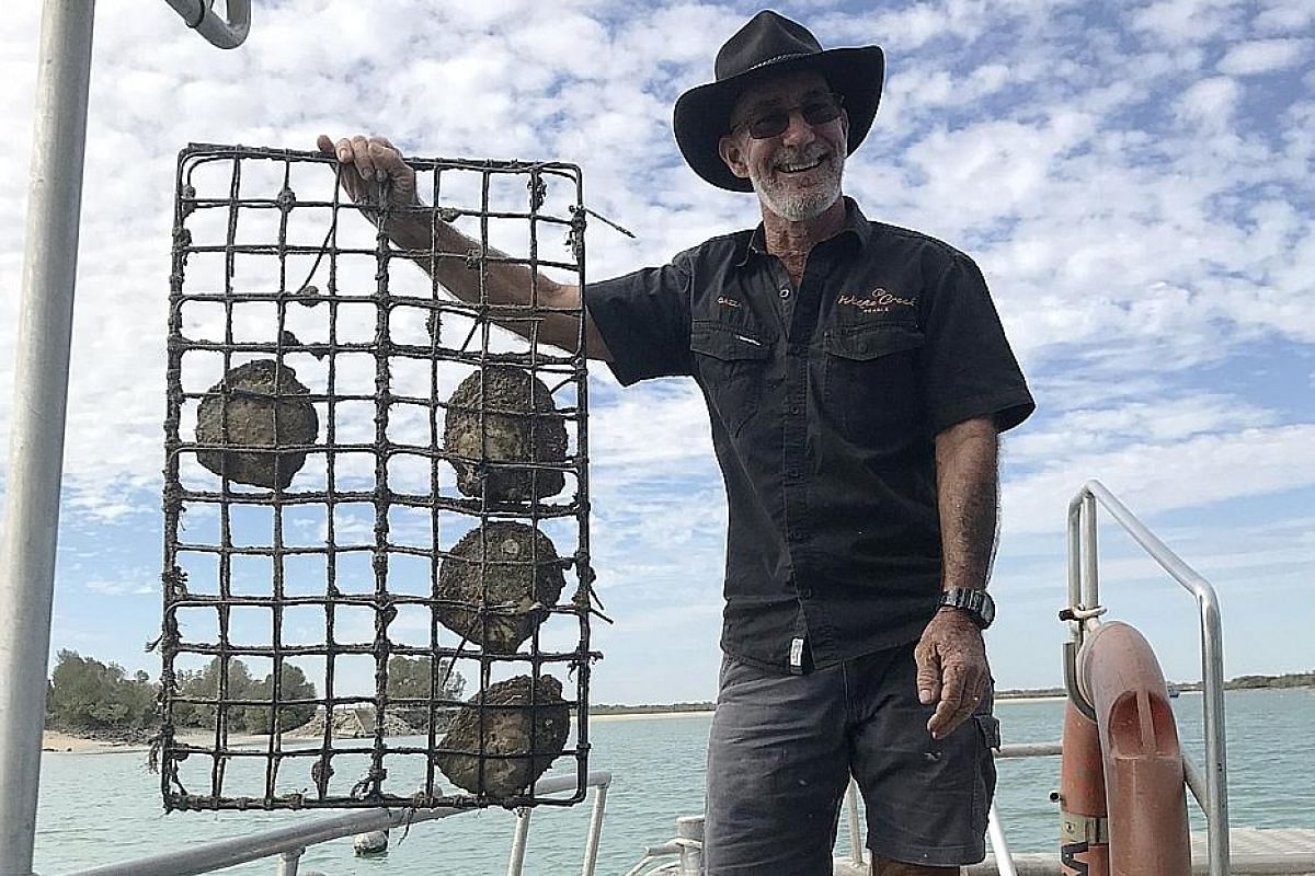 (Above left) The Sacred Heart Church in Beagle Bay boasts an altar decorated entirely in mother-of-pearl shells. (Above) A Willie Creek Pearls employee hauls a cage of live oysters for cleaning.