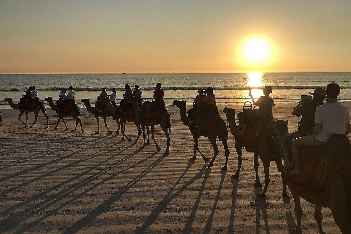 Riding a camel on Cable Beach during sunset is a must for visitors to Broome. About 6km from Broome, the red cliffs of Gantheaume Point showcase the famous colours of the Kimberley as they drop dramatically into the sea.