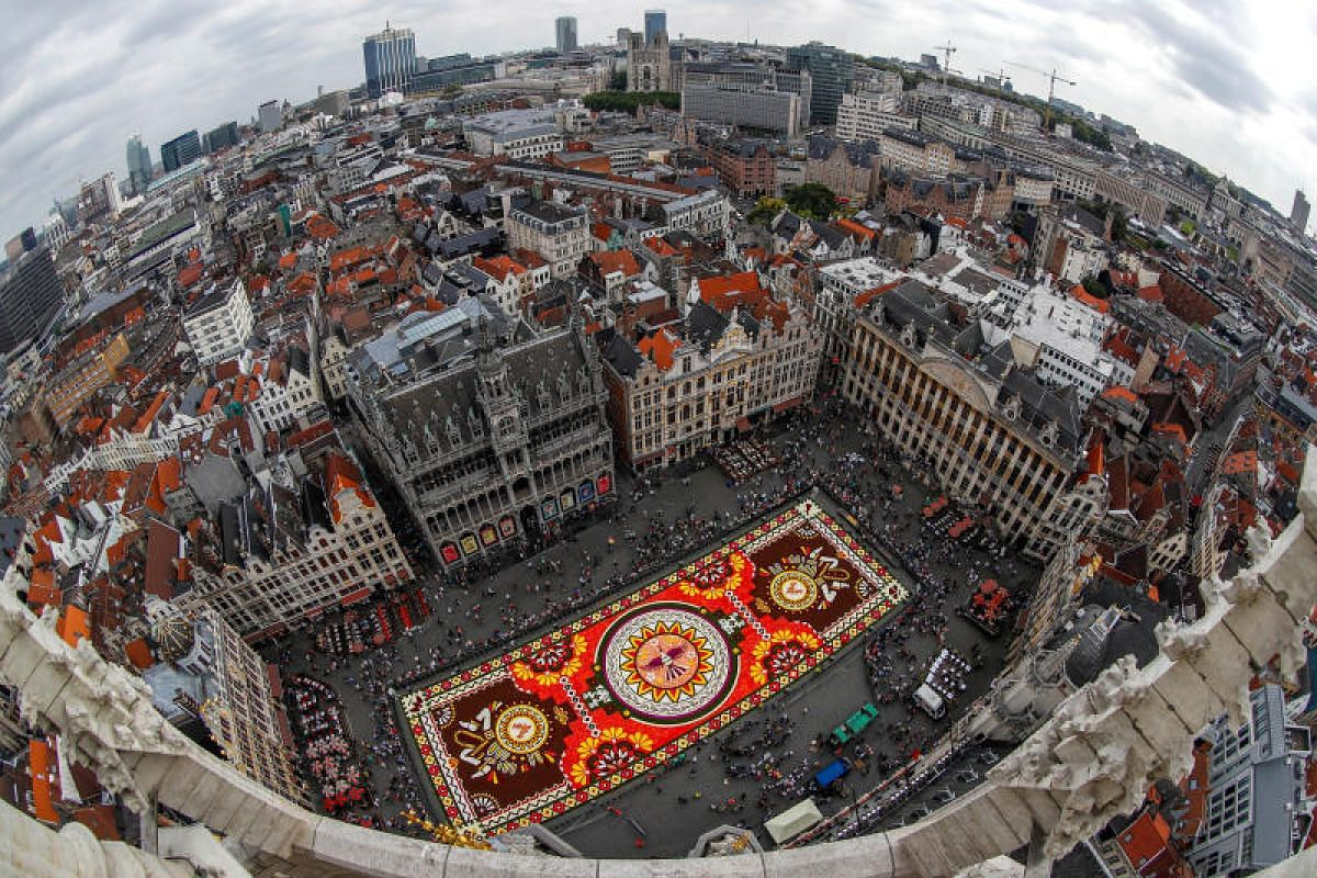 """An aerial shot of a 1,800 square meters flower carpet based on the theme """"Guanajuato, cultural pride of Mexico"""", made with over 500,000 dahlias and begonias is seen at Brussels' Grand Place, Belgium on Aug16, 2018. PHOTO:REUTERS"""