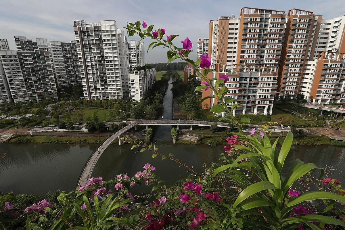 Pedestrians at Punggol Waterway, Singapore's first man-made waterway. The design of the waterway and landscape promenade embraces the area's rich coastal heritage. A boy looking at an upcoming development as the LRT train travels along the Punggol We