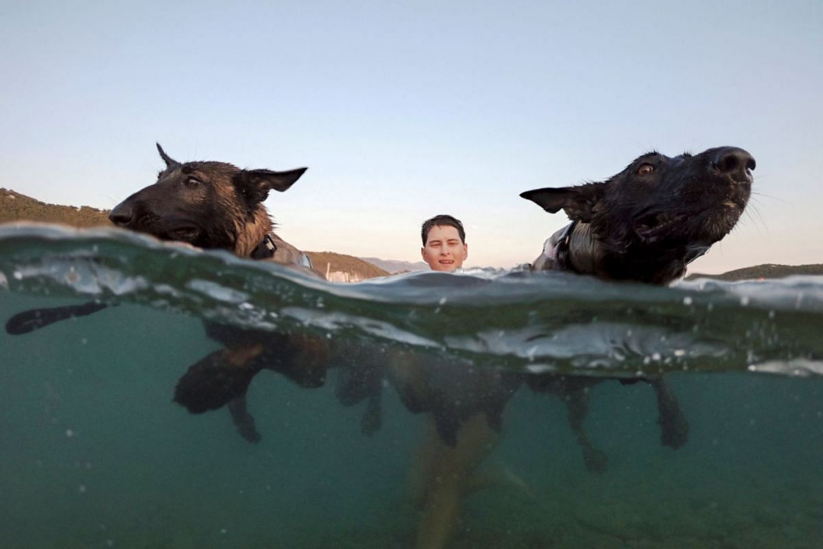 """A dog and its owner take part in the """"Underdog 2018"""" beach race in Banjol, Croatia, on Aug 28, 2018."""