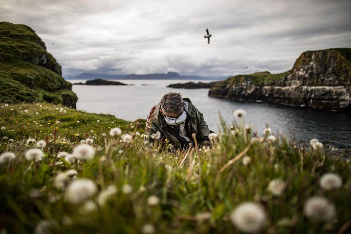 A scientist uses an infrared camera to peer inside a puffin burrow on Papey Island in Iceland, on July 23, 2018.