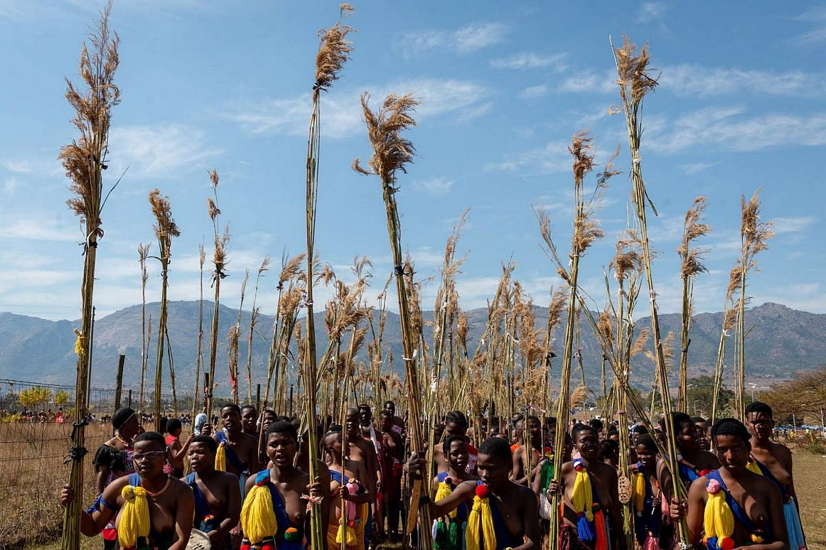 Young women participating in the annual 'Umhlanga', or Reed Dance ceremony, march towards the main stadium at the Swazi Royal Residence with their reeds to be presented to King Mswati III, in Mbabane, Swaziland or eSwatini, on Sept 2, 2018.