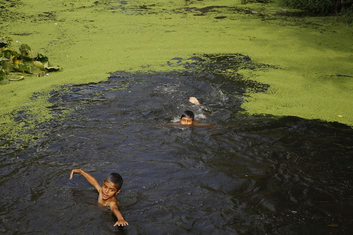 Kashmiri boys swim in the waters of the Dal Lake in Srinagar, the summer capital of Indian Kashmir, on Sept 4, 2018.