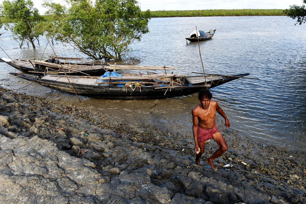A view of the forest (in background) of the Sundarbans on Bali island. The fishing community say they have no choice but to risk their lives in the core area of the forest - which is off-limits for human activity - with one fisherman saying fish and