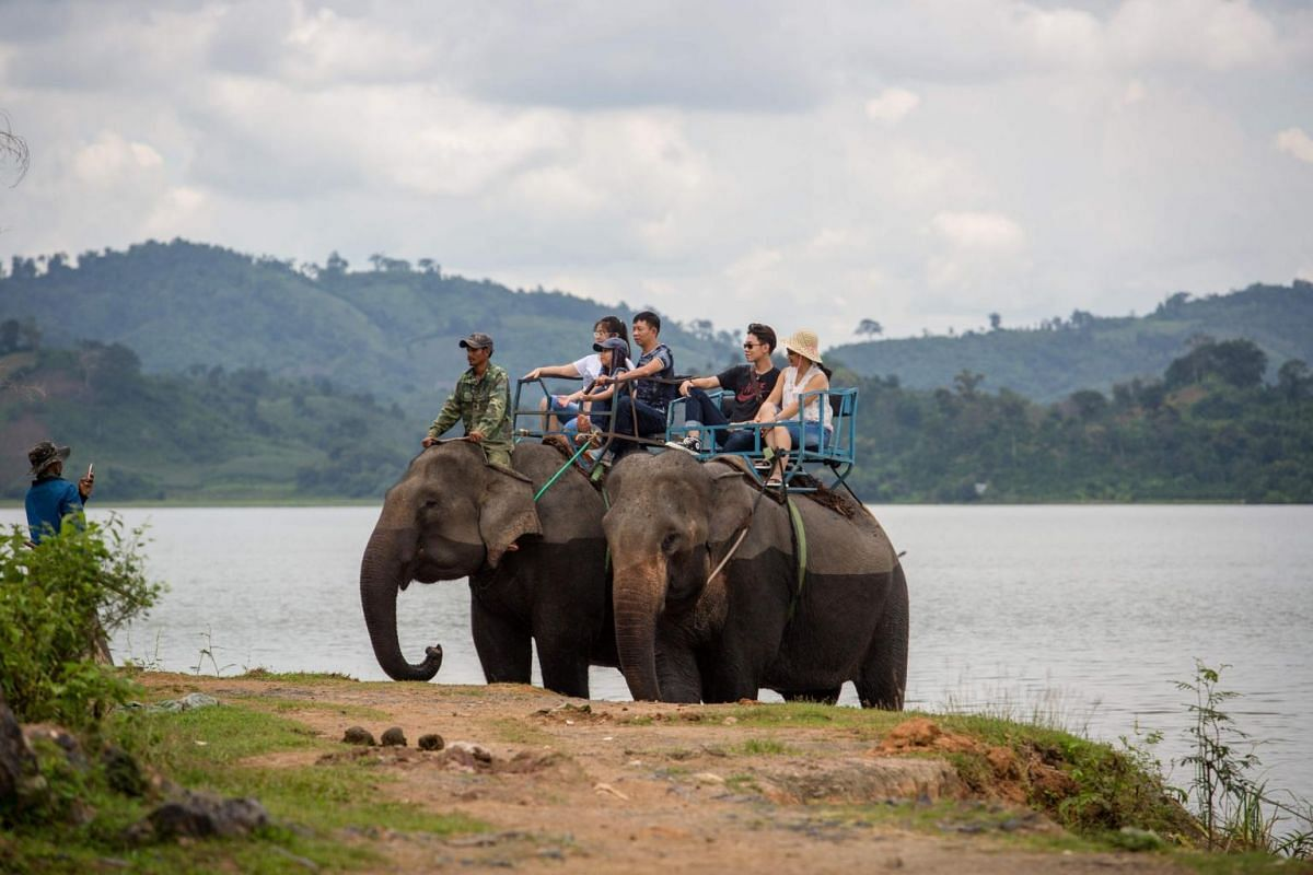 Tourists ride elephants during a trek around Lak district, Dak Lak province.