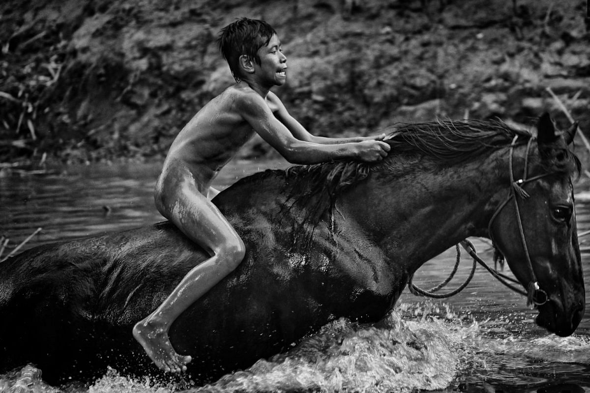 A horse is taken for a cooling bath after a day of racing in Maen Jaran horse races, on Sumbawa Island, Indonesia, on Sept 17, 2017.