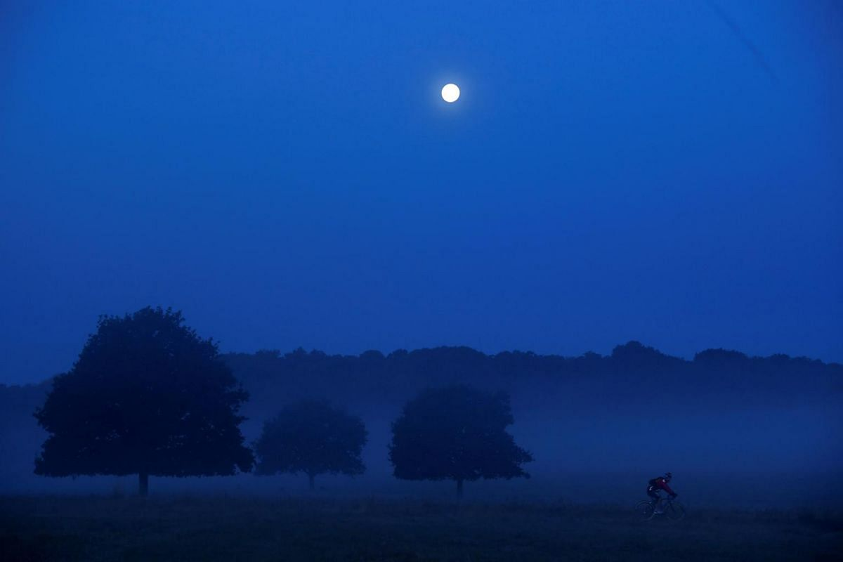 A cyclist riding before dawn with the moon above him in Richmond Park in west London, Britain, on Sept 26, 2018.