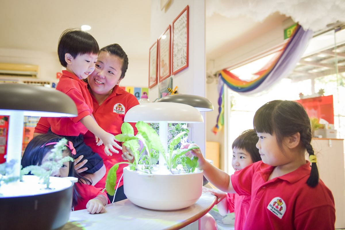 Pre-school principal Eileen Lua grows vegetables in the school using the Plantui smart gardening system and uses it to teach her pre-schoolers about caring for plants.