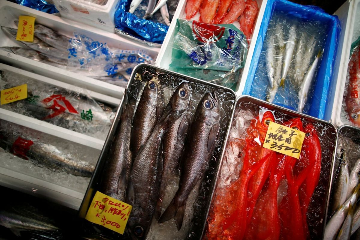 Different types of fresh fish for sale.