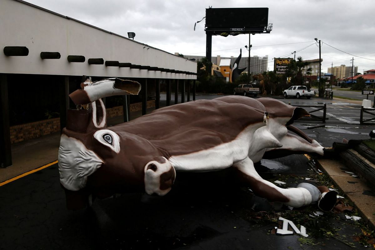 """A restaurant fixture known as """"Big Gus"""" is seen damaged by Hurricane Michael in Panama City Beach, Florida, U.S. October 10, 2018. PHOTO: REUTERS"""