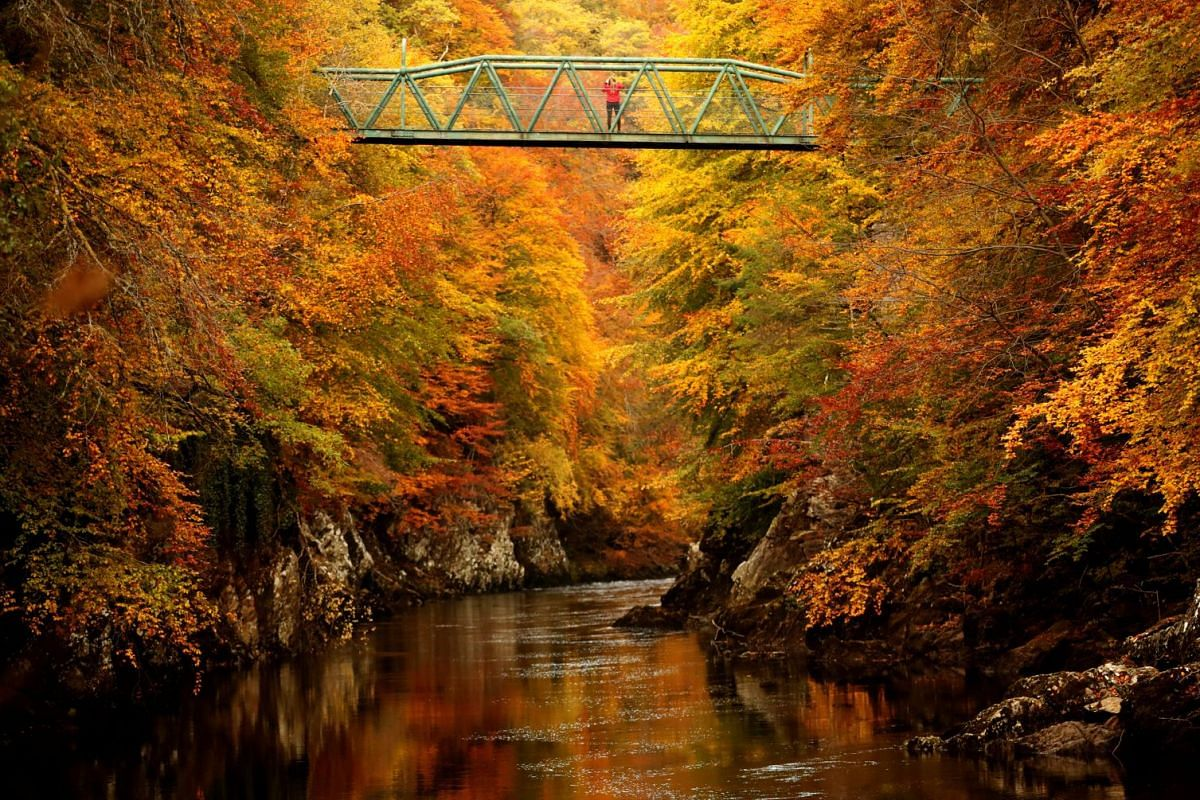 A woman stands on the footbridge over the river Garry near Pitlochry , Scotland, Britain October 10, 2018. PHOTO: REUTERS