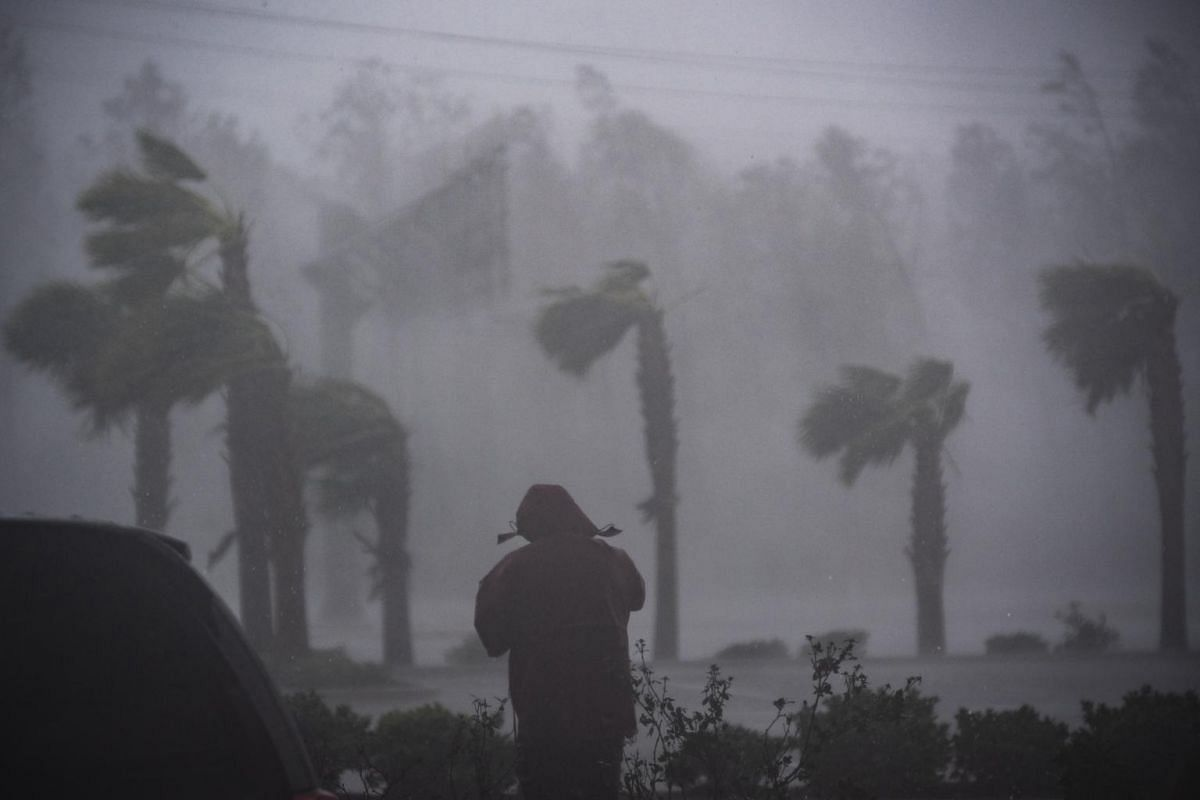 A television reporter stands watching as Hurricane Michael whips the trees in Panama City Beach, Florida.