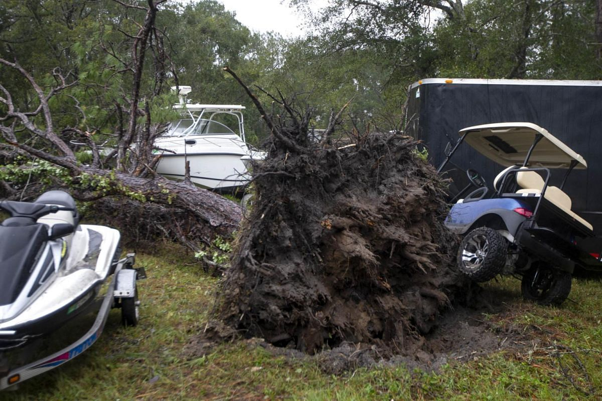 A large tree is shown toppled onto cars and boats on Oct 10, 2018, in Crawfordville, Florida.