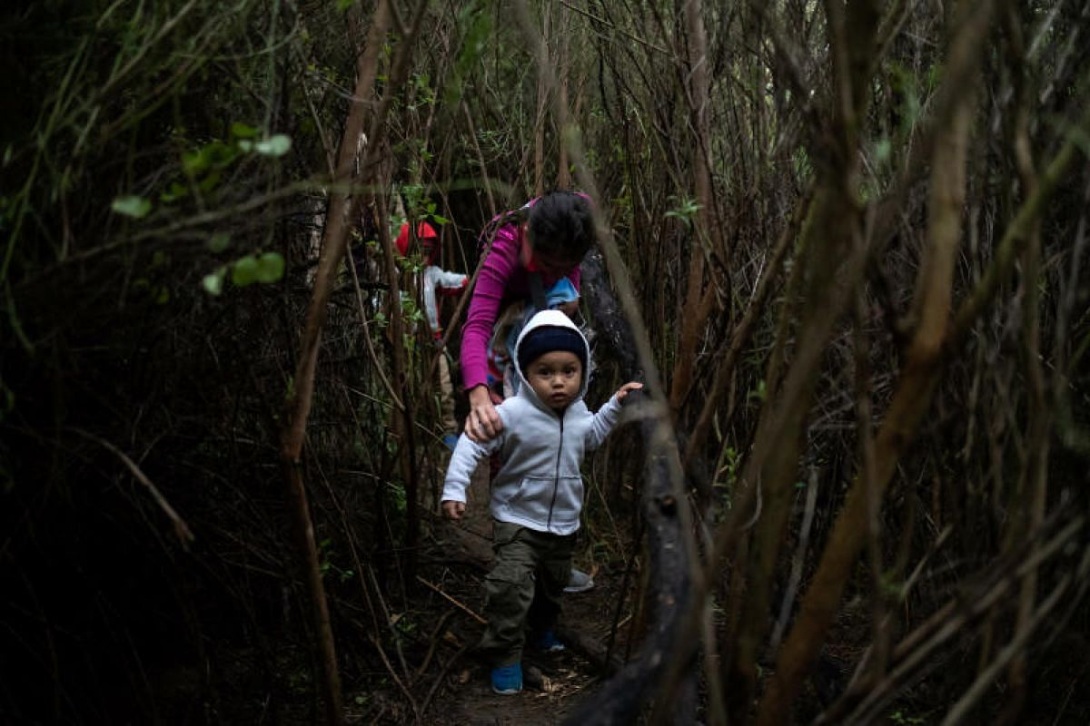 Mateo, a two-year-old boy from Honduras, is led through dense brush by his mother Juana Maria after a group of two dozen families members illegally crossed the Rio Grande river into the United States from Mexico, in Fronton, Texas on Oct 18, 2018. PH