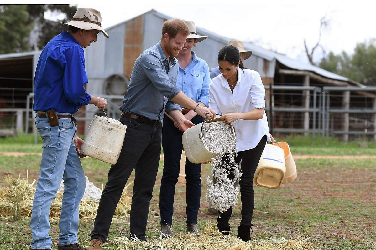 Britain's Prince Harry and his wife Meghan, Duchess of Sussex visit a drought-affected farm called Mountain View near Dubbo on Oct 17, 2018.