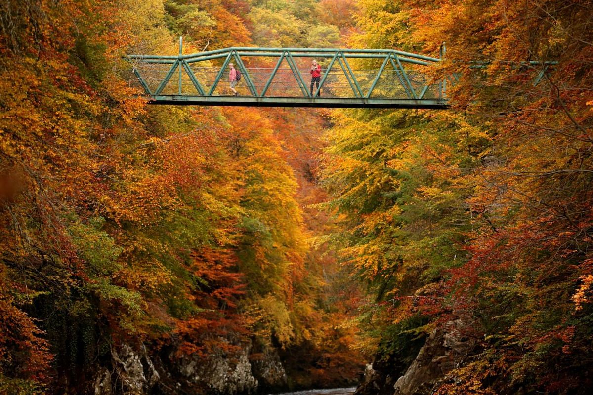 People crossing the footbridge over the river Garry near Pitlochry, Scotland, Britain, on Oct 10, 2018.