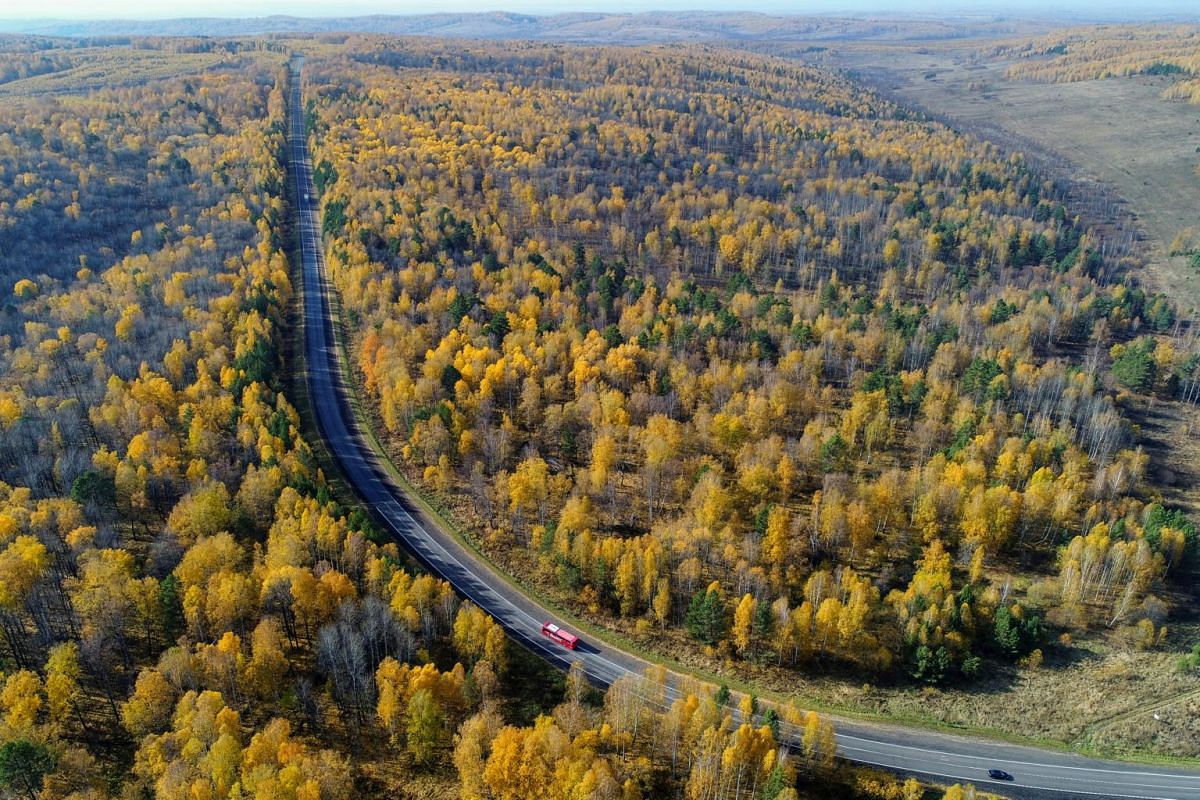Vehicles drive along the Yenisei highway through a taiga or boreal forest in autumn foliage in the Krasnoyarsk region, Siberia, Russia, on Sept 29, 2018.