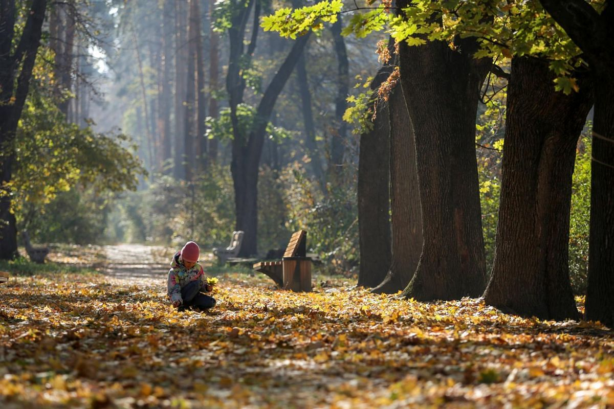 A girl collects autumn leaves at the Botanical Garden in Almaty, Kazakhstan, on Oct 21, 2018.