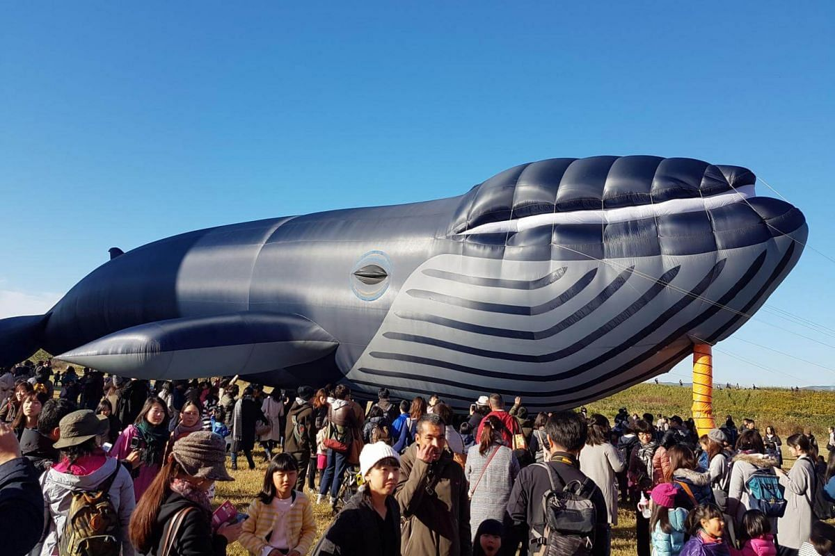 A total of 16 unique balloons, including a fan-powered whale, participated in the Balloon Fantasia segment.