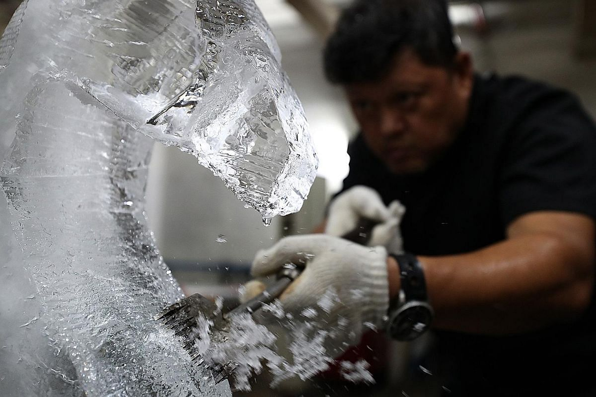 Dressed up in thick winter gear, Mr Jeffrey Ng works on the finer details of a peacock ice sculpture inside the freezer. When the peacock ice sculpture is completed, it is lifted carefully with a forklift onto an ice truck for delivery to the custome