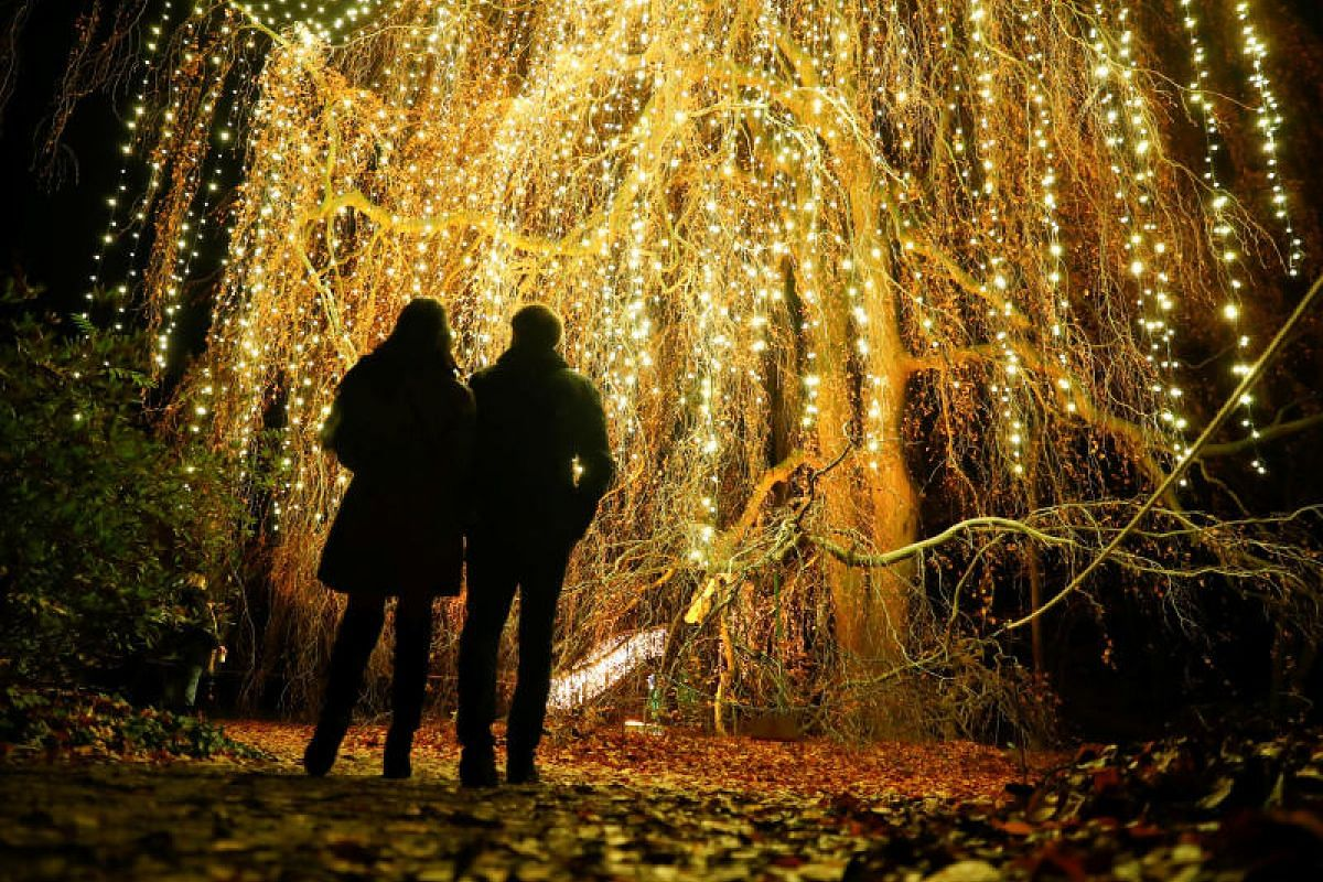Visitors walk along illuminated objects during the Christmas Garden event at a botanic garden in Berlin, Germany on Nov 15, 2018. PHOTO:REUTERS