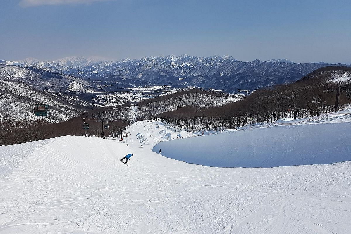 Above: Hakuba in Nagano, Japan, has challenging runs. Left: At Laax resort in Switzerland, experienced snowboarders can ride on rails or boxes. Below: Join a dog-sledding tour at Amangani, Jackson Hole, Wyoming.