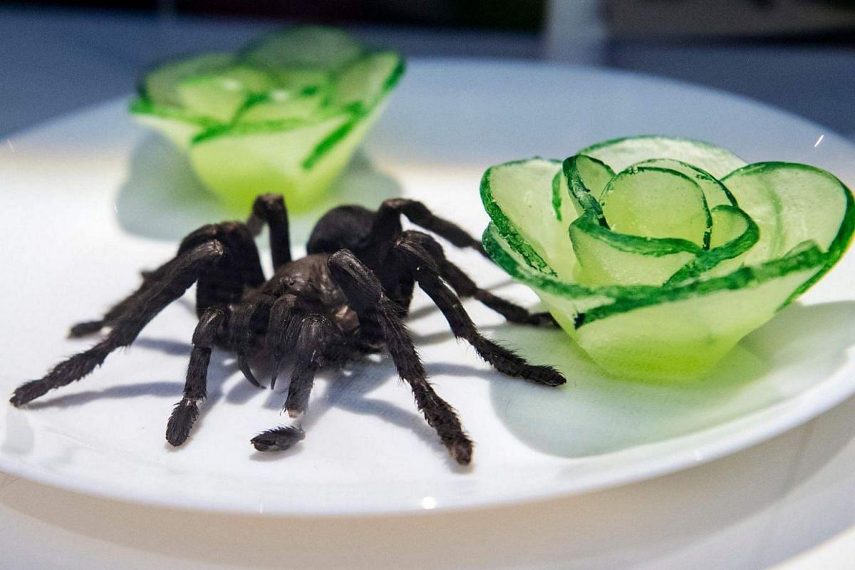 Deep-fried tarantula.
