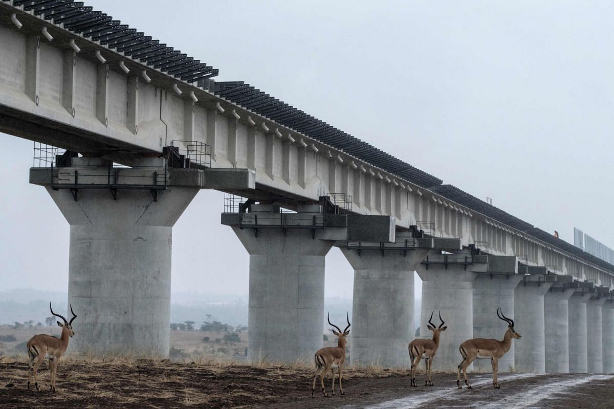 Impalas walk near the elevated railway that allows movement of animals below the tracks at the construction site of Standard Gauge Railway (SGR) in Nairobi National Park, Kenya, on November 21, 2018. PHOTO: AFP