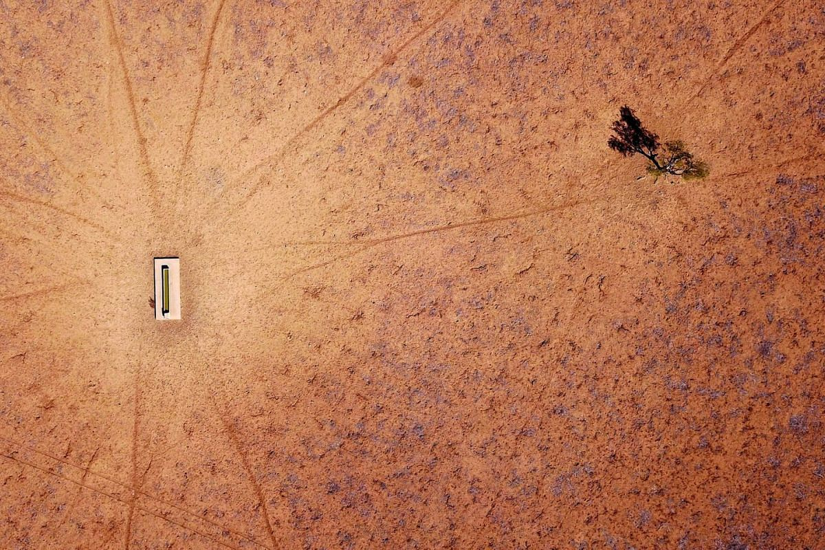 A lone tree stands near a water trough in a drought-effected paddock on Jimmie and May McKeown's property located on the outskirts of Walgett town, in New South Wales, Australia, on July 20, 2018.