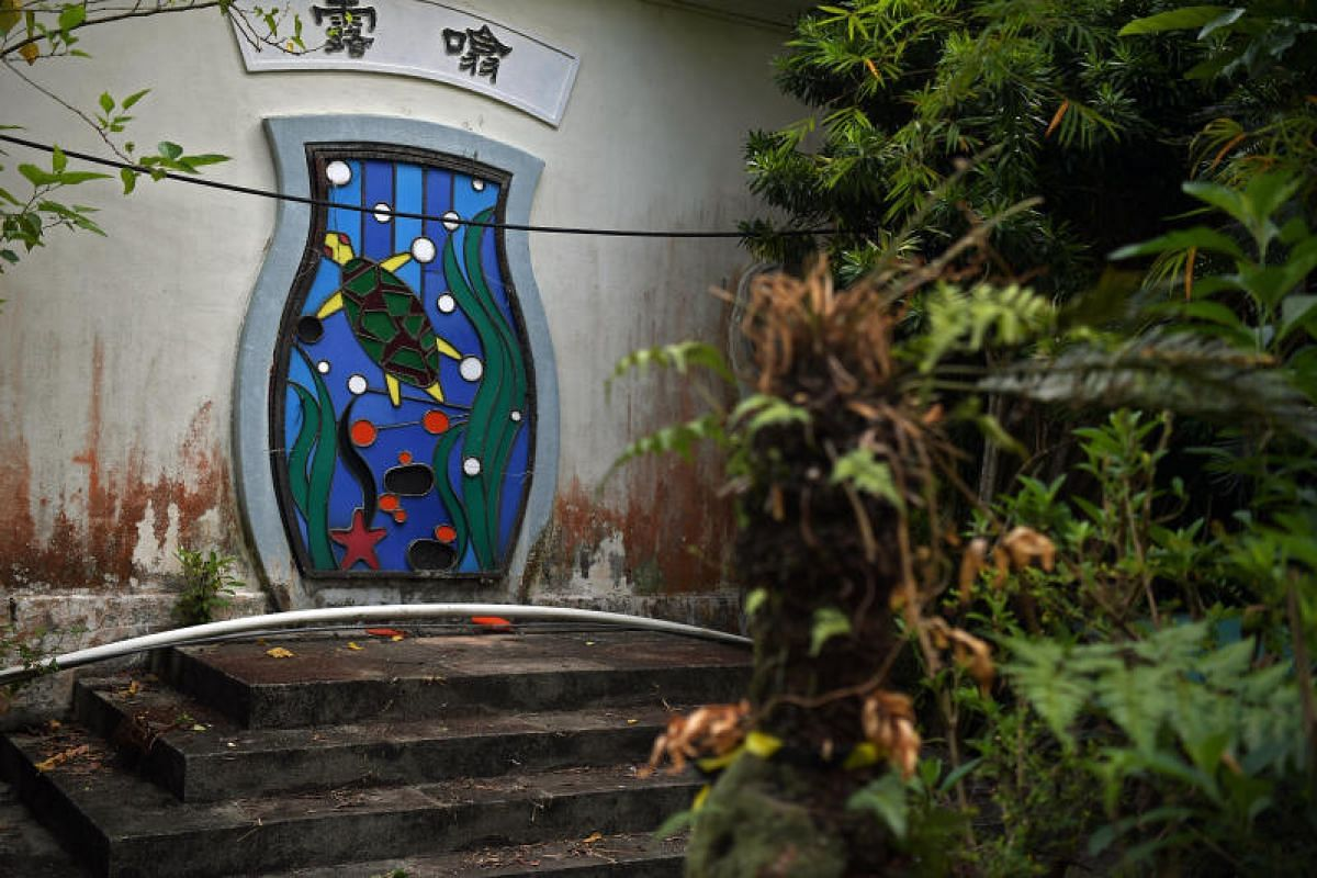 Abstract images of turtles decorate the entry to the Live Turtle and Tortoise Museum at its Chinese Gardens site.