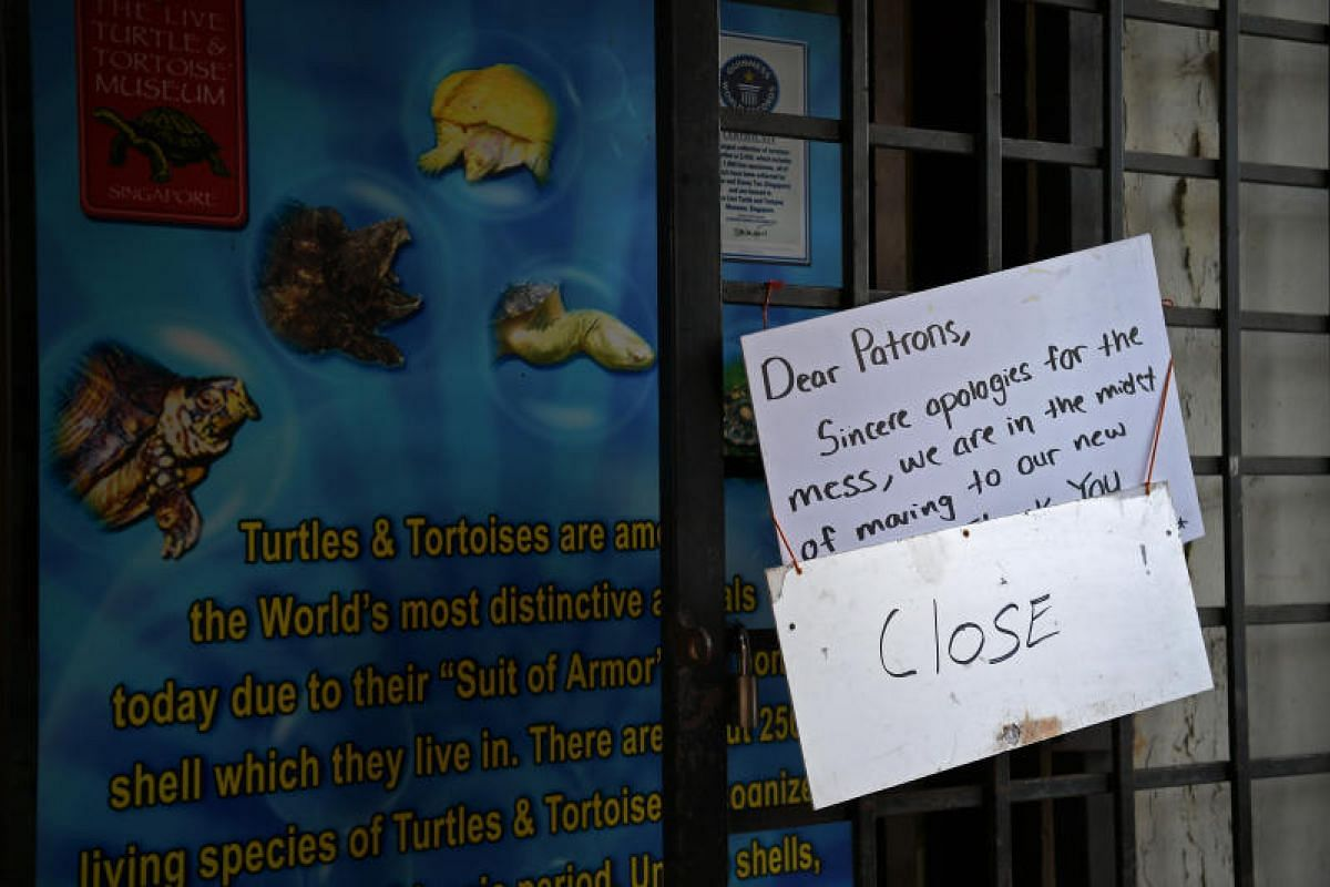 A notice hangs at the entrance to the Live Turtle and Tortoise Museum at its Chinese Gardens site in preparation for the big move.