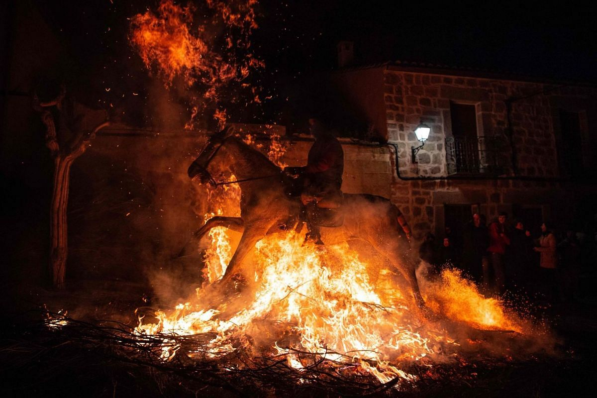 """A horseman jumps over a bonfire in the village of San Bartolome de Pinares in the province of Avila in central Spain, during the opening of the traditional religious festival """"Luminarias"""" in honour of San Antonio Abad (Saint Anthony), patron saint of"""