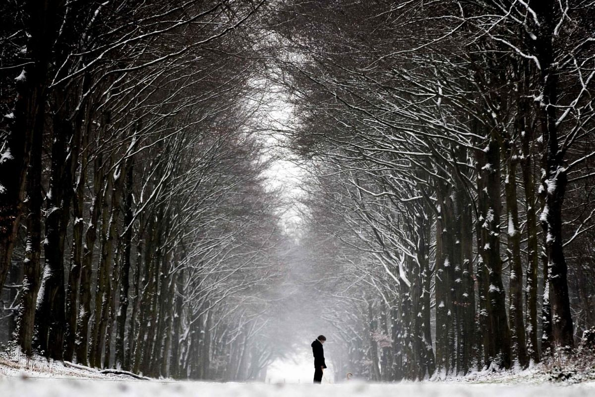 A man walks his dog as the first snow of the year falls in Heiloo, Netherlands, on Jan 22, 2019.