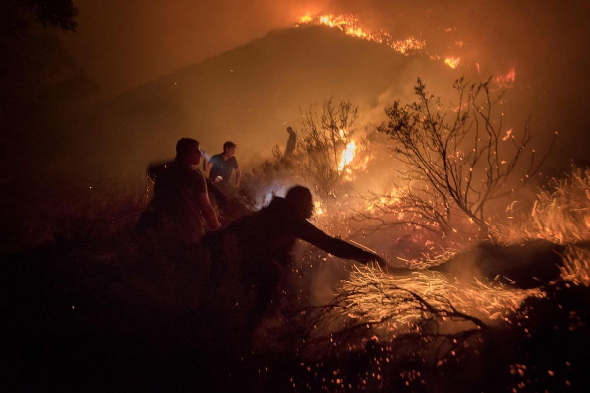 Volunteers and local residents use wet towels to fight one front of a large brush fire that started around the mountains in the city centre on January 27, 2019, in Cape Town. PHOTO: AFP
