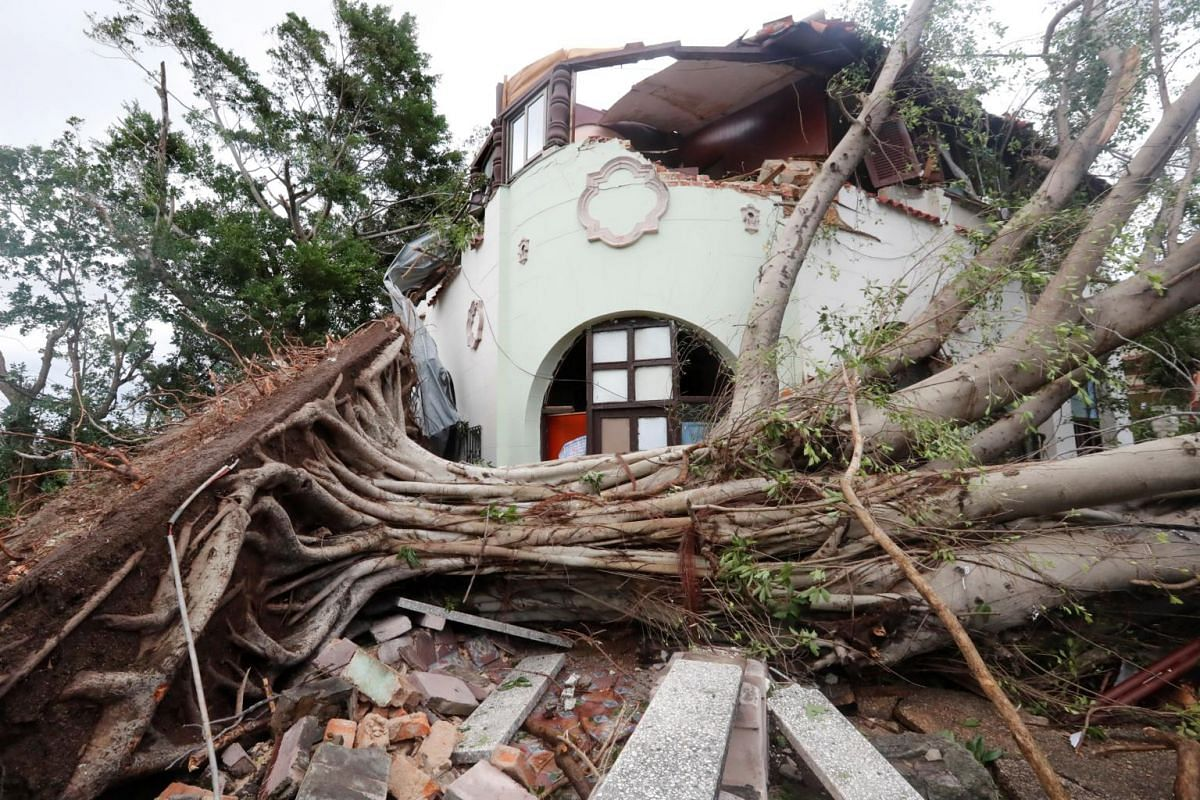 View of a house partially destroyed by fallen trees after a tornado hit Havana, Cuba on 28 Jan, 2019.
