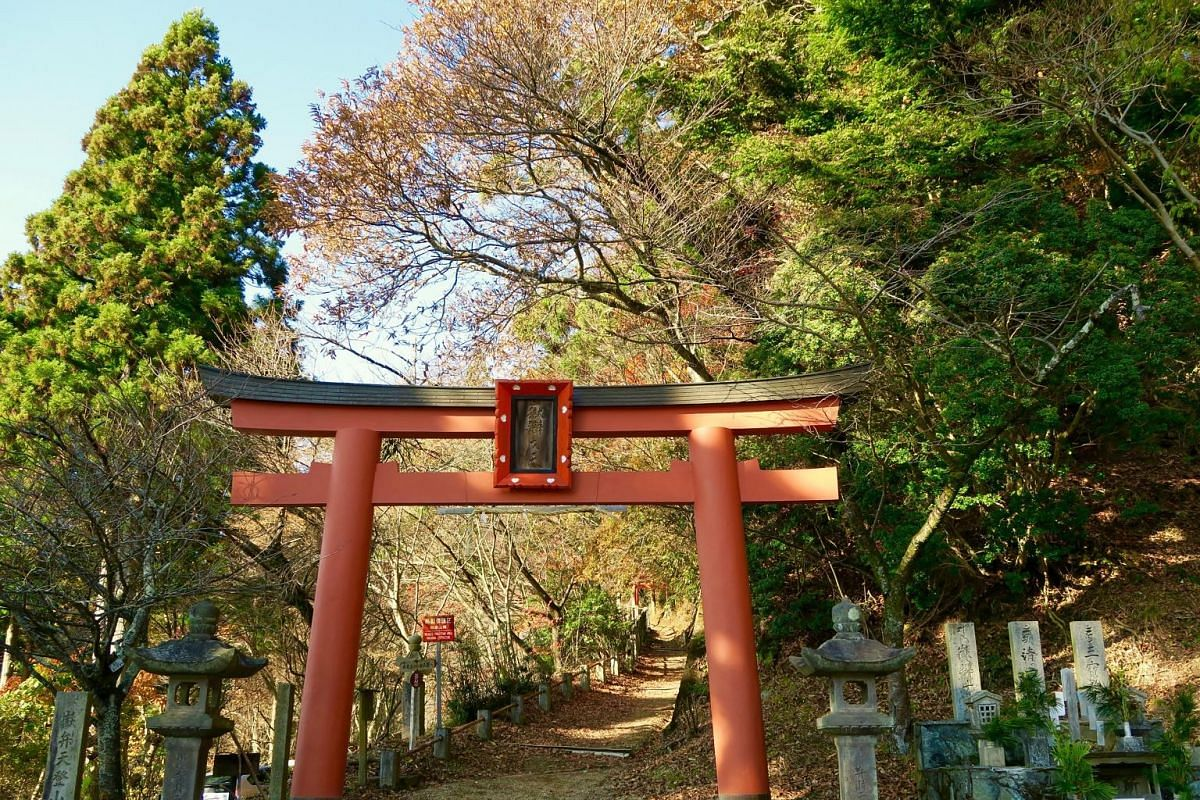 The Kumano Kodo journey takes travellers through gorgeous natural landscapes  of Japan that change colour through the seasons.