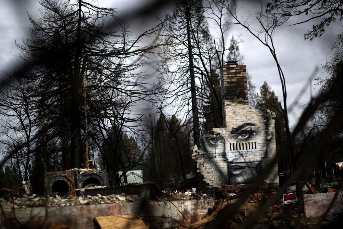 A mural by artist Shane Grammer is visible on chimney at a home destroyed by the Camp Fire on February 11, 2019 in Paradise, California. PHOTO: GETTY IMAGES/AFP