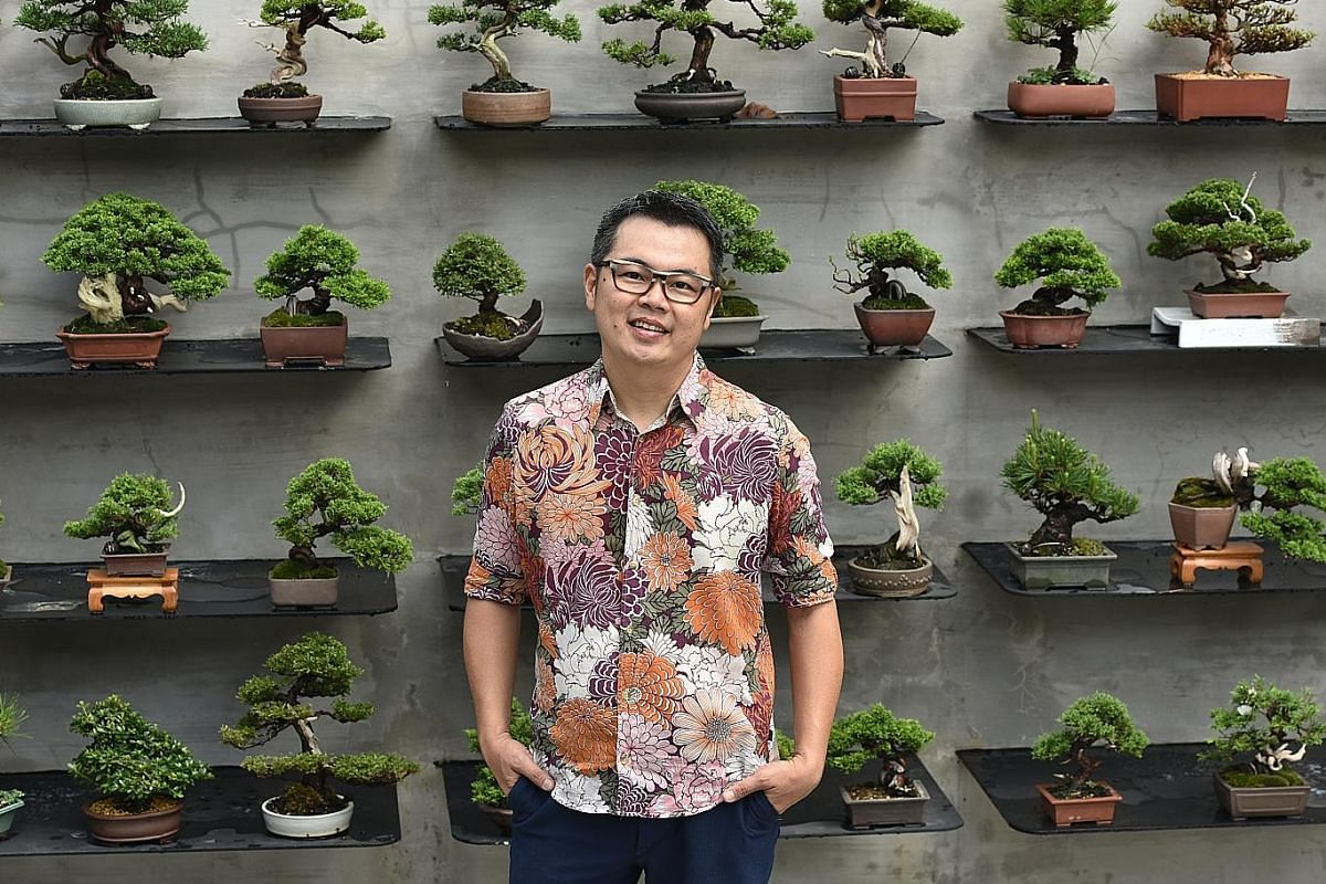 Mr Eddy Elias Teo, owner of Jia Bonsai Singapore, with his bonsai plants at his landed property in Upper Thomson.