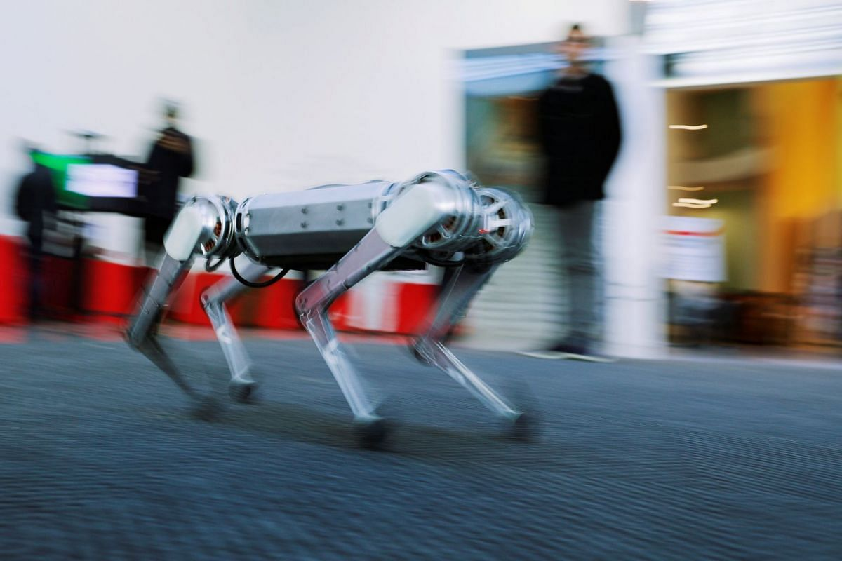 Students demonstrate the Mini Cheetah, a quadruped robot, during presentations to celebrate the new MIT Stephen A. Schwarzman College of Computing at the Massachusetts Institute of Technology in Cambridge, Massachusetts, U.S., February 26, 2019. PHOT