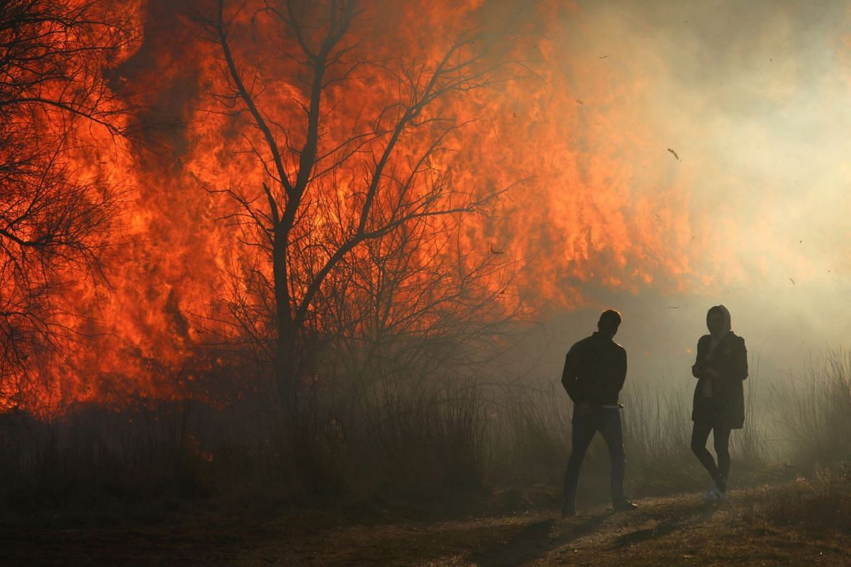 People look at flames of fire as dry grass and bushes burn near the village of Ivanovka, Crimea March 3, 2019. REUTERS