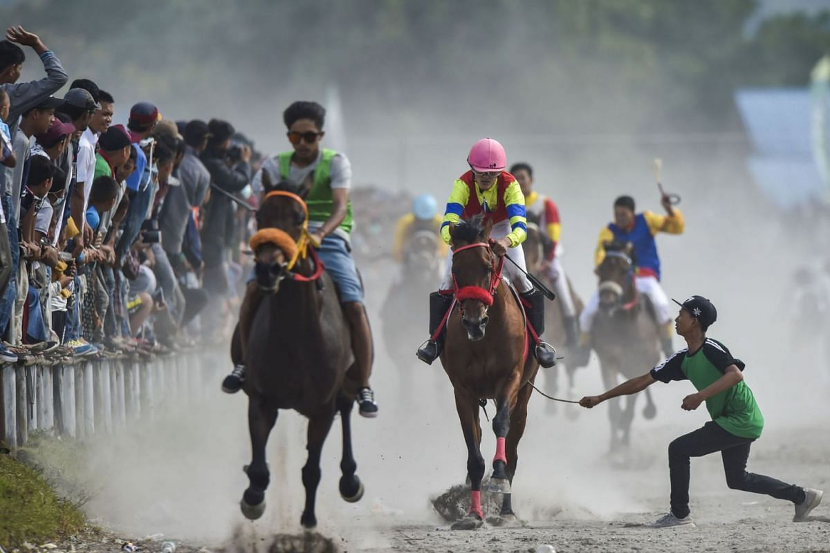 A youth (R) on the course hits a horse to make it run faster as young jockeys compete in a traditional horse race at Takengon, Aceh province on March 2, 2019. PHOTO: AFP