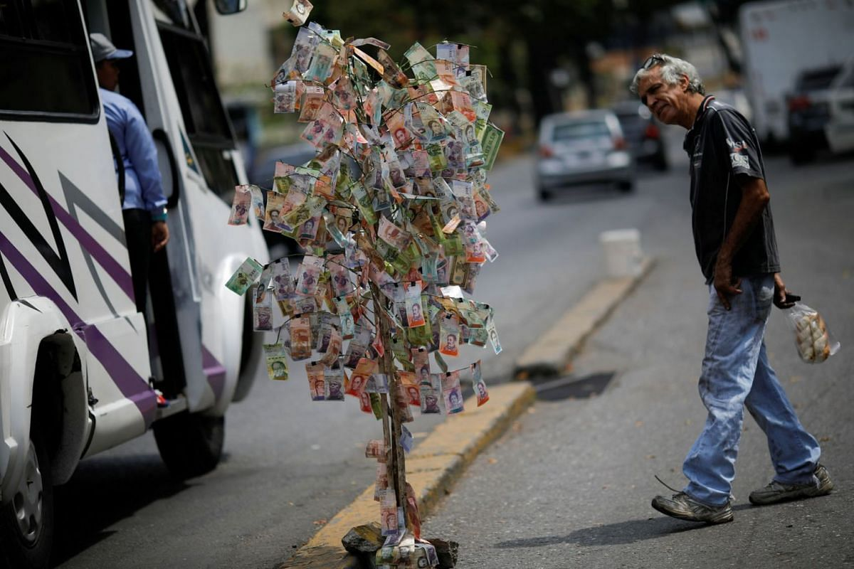 A man looks at Venezuelan bolivar notes hung to resemble a tree, in Caracas, Venezuela March 6, 2019. PHOTO: REUTERS